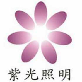 深圳市紫光照明技术股份有限公司