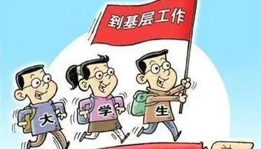 江苏农林职业技术学院2021年高职院校提前招生简章